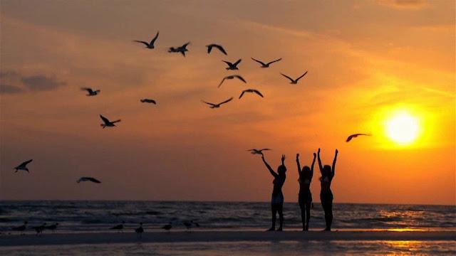 O Desafio de Felicidade para Mudar sua Vida: Mês 2