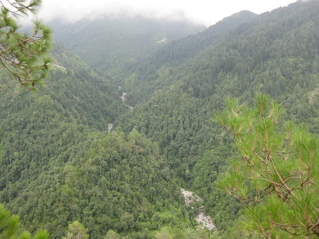 view of naddi
