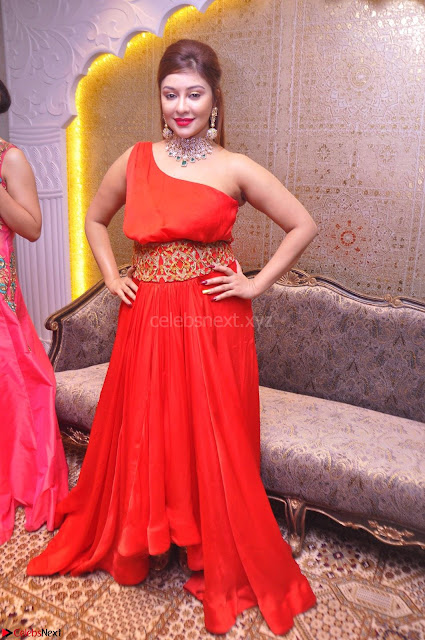 Payal Ghosh Looks Stunning in Red Half Shoulder Gown 001.JPG