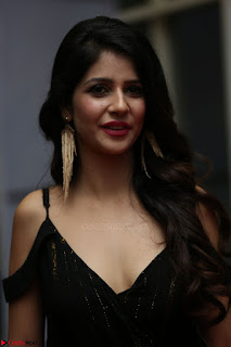 Kashish Vohra at Rogue Movie Audio Launch ~  (46).JPG