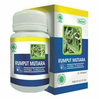 Rumput Mutiara Obat Herbal Peradangan