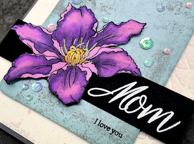#cardbomb, #stampinup, #paper-garden, #simonsaysstamps, #timholtz, #copics, #flowers, #cards, #stamps, #ink, #paper, #papercraft, #diy, #handmade, #creative, #texture, #grunge, #color,