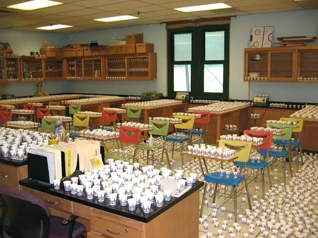 school pranks, pranks for school