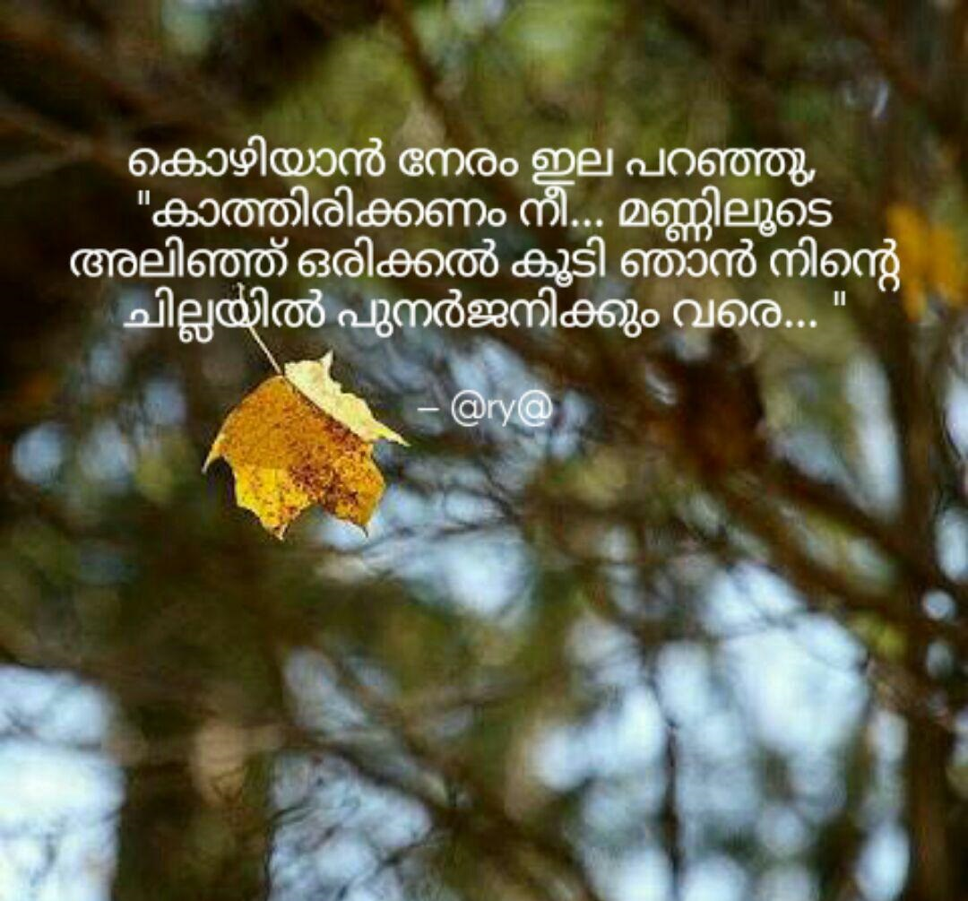 Impressive Malayalam Quotes And Sayings Kwikk Kwikk