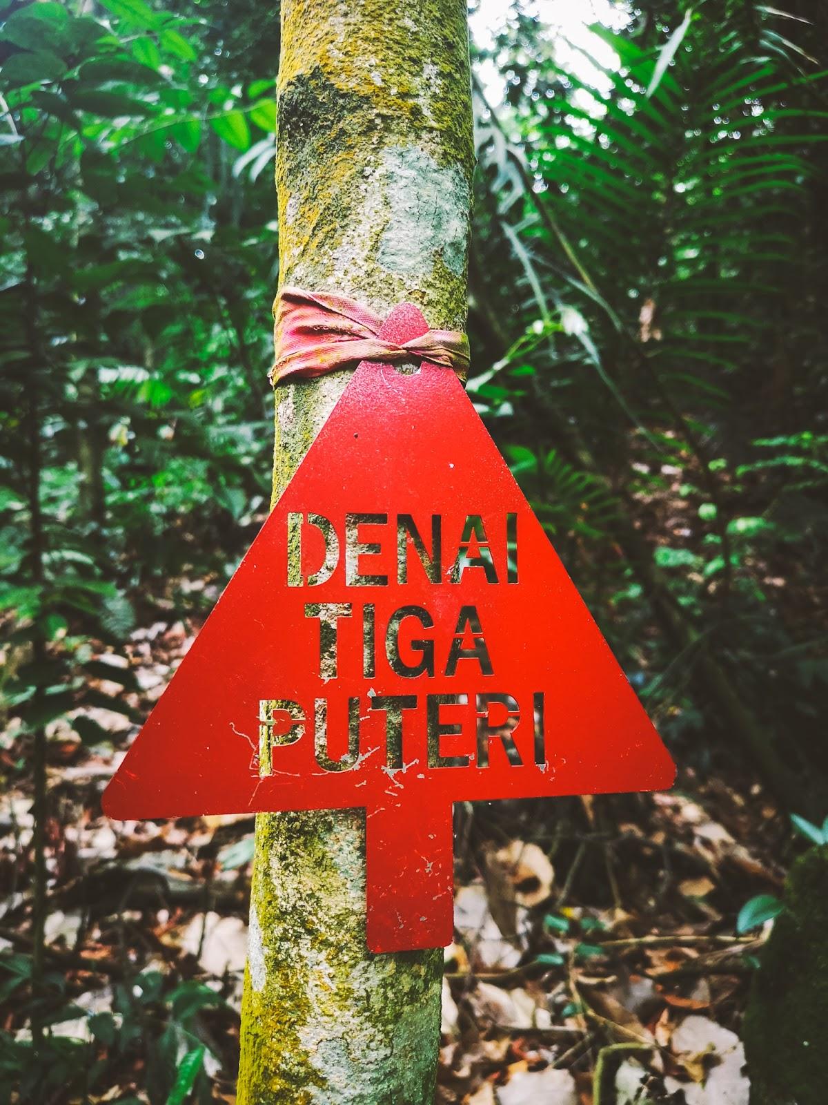Kota Damansara Community Forest (KDCF) - Denai Tiga Puteri