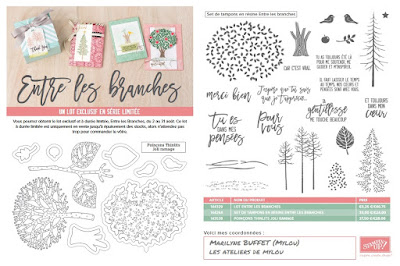 https://fr.pinterest.com/stampinup/thoughtful-branches-bundle/