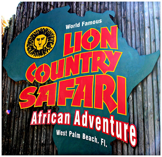 ThursdayThrowback-Lion Country Safari Summer of Savings!