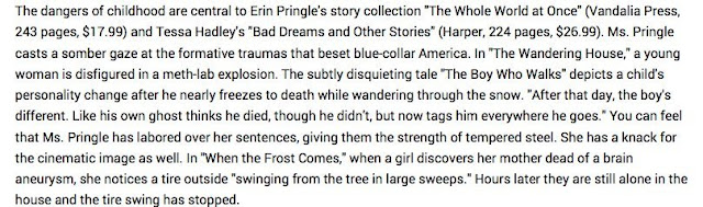 "The dangers of childhood are central to Erin Pringle's story collection ""The Whole World at Once"" (Vandalia Press, 243 pages, $17.99) and Tessa Hadley's ""Bad Dreams and Other Stories"" (Harper, 224 pages, $26.99). Ms. Pringle casts a somber gaze at the formative traumas that beset blue-collar America. In ""The Wandering House,"" a young woman is disfigured in a meth-lab explosion. The subtly disquieting tale ""The Boy Who Walks"" depicts a child's personality change after he nearly freezes to death while wandering through the snow. ""After that day, the boy's different. Like his own ghost thinks he died, though he didn't, but now tags him everywhere he goes."" You can feel that Ms. Pringle has labored over her sentences, giving them the strength of tempered steel. She has a knack for the cinematic image as well. In ""When the Frost Comes,"" when a girl discovers her mother dead of a brain aneurysm, she notices a tire outside ""swinging from the tree in large sweeps."" Hours later they are still alone in the house and the tire swing has stopped."