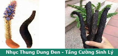 nhuc-thung-dung-tang-cuong-suc-manh-cho-qui-ong