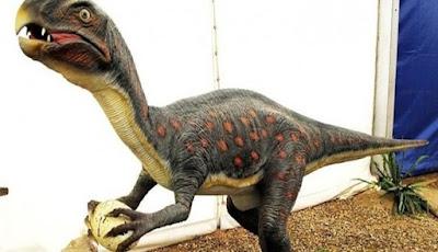 Puluhan Fosil Telur Dinosaurus Digali di China