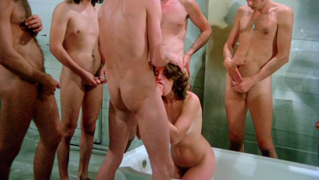 The Ultimate Pleasure (1977)