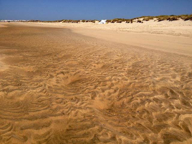 playa doñana