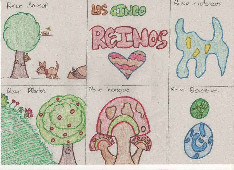 6º C Blas Infante Dibujo Reinos De Los Seres Vivos