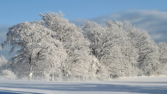 Wallpaper 2: White. Landscape. Nature. Winter. Snow