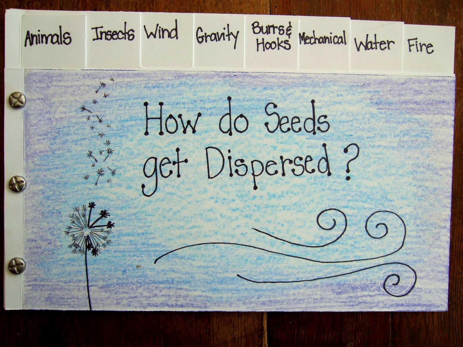 The Inspired Classroom How Do Seeds Get Dispersed