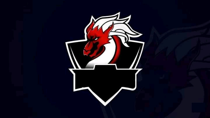 47+ Gambar Logo Squad Ff Keren Terbaik