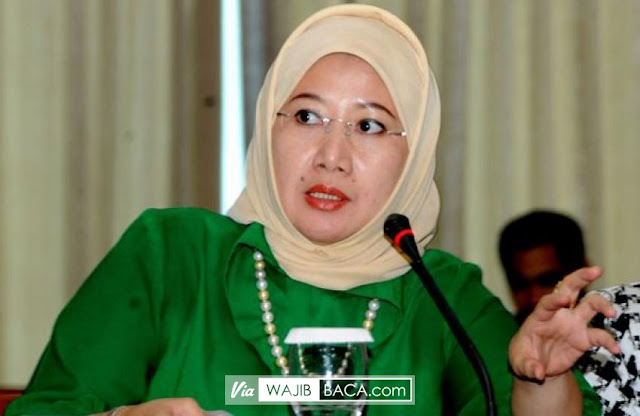 Ketua Fraksi PPP Reni Marlinawati, Minta Polisi Tak Berlebihan Menindak Teroris