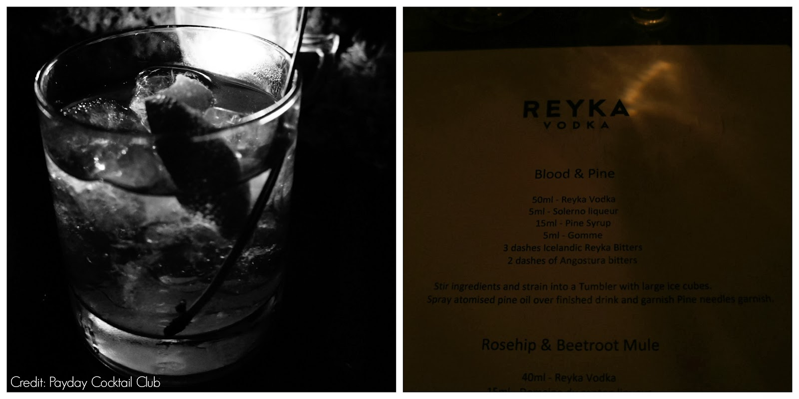 Reyka Vodka bitters launch party at Looking Glass Cocktail Club