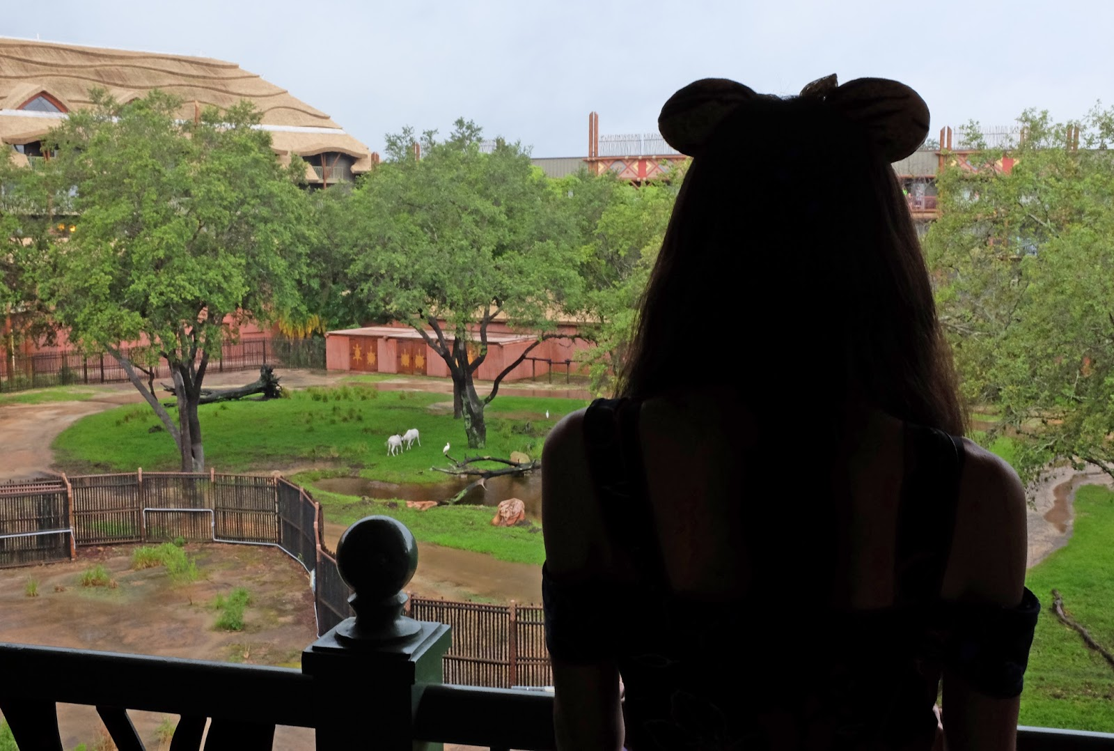 Minnie ears silhouette on an Animal Kingdom Lodge balcony