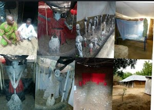 OMG!  Ritualists Den Uncovered In Afon, Kwara State, 2  Ritualists Arrested( See Photos)