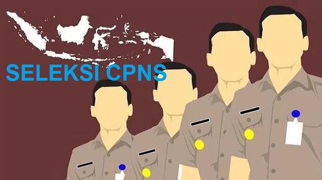 Seleksi CPNS 2018