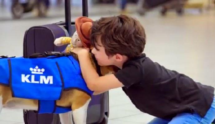 El perro que devuelve objetos de pasajeros en KLM