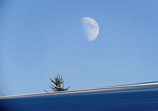 Księżyc pojawił się na firmamenci
