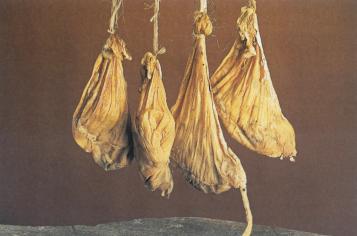 Πως φτιάχνουμε φυσική ζωική πυτιά από στομαχάκι ζώου
