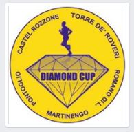 daimond-cup