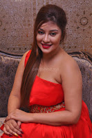 Payal Ghosh Looks Stunning in Red Half Shoulder Gown 025.JPG