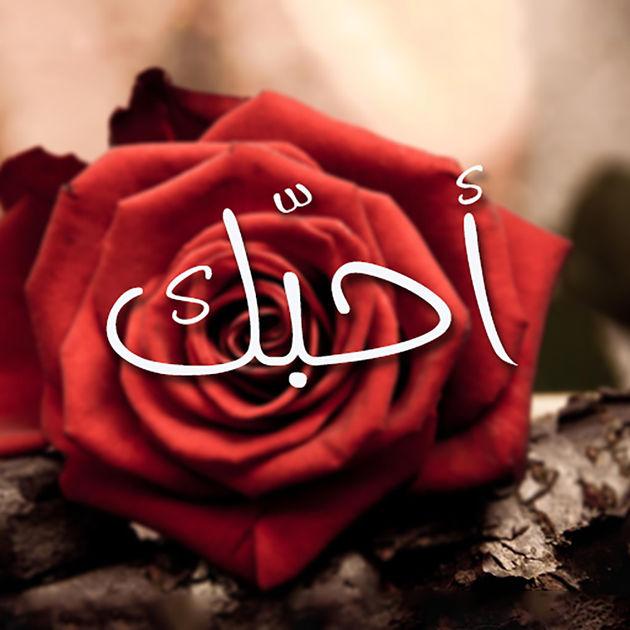 كلمة احبك مع وردة