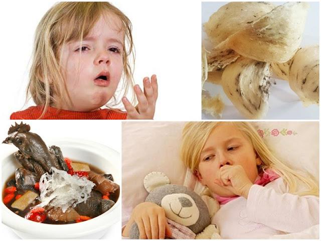 Cách chế biến món ăn từ yến cho trẻ bị hen suyễn