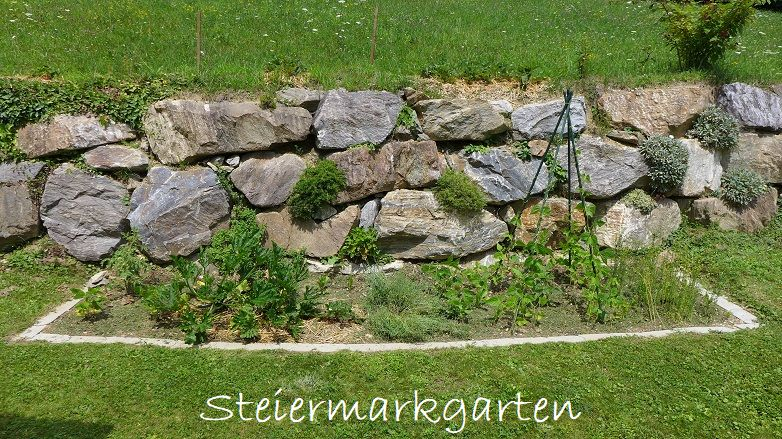 Gemüsebeet-anlegen-Steiermarkgarten