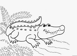 Crocodile Coloring Pages On River