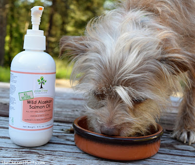 Wild Alaskan Salmon Oil from pawTree