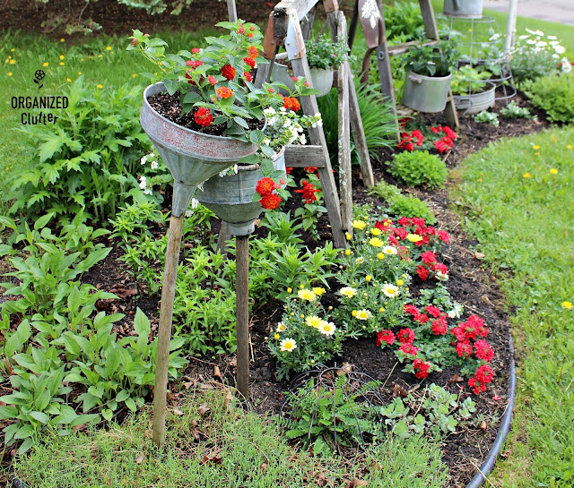 Annuals, Perennials, and Amazing Junk in the Border