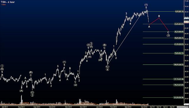 Elliott Wave Option Signals - Closed TSN Short at 34% Profit