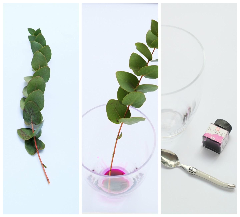 Eucalyptus op kleur brengen - Diy decoratie