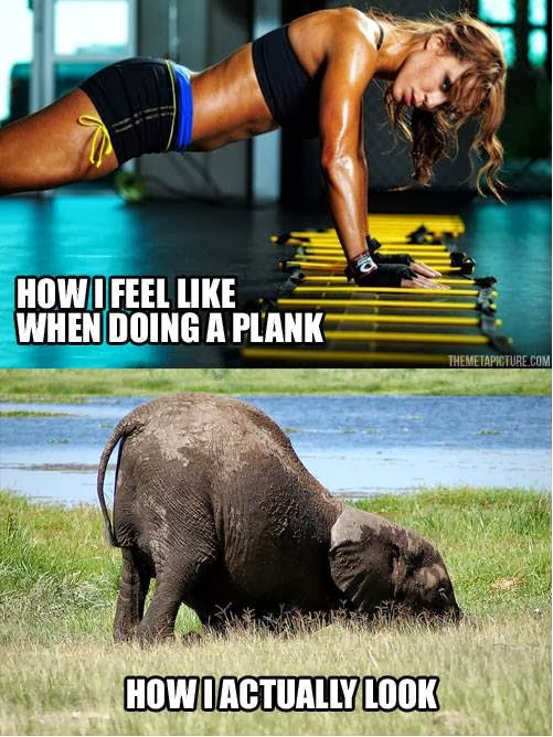 Planking I What I I Actually Plank When Look Look And What