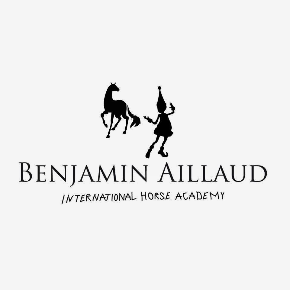 https://www.facebook.com/pages/Benjamin-Aillaud-International-Horse-Academy/143617935787176?fref=ts