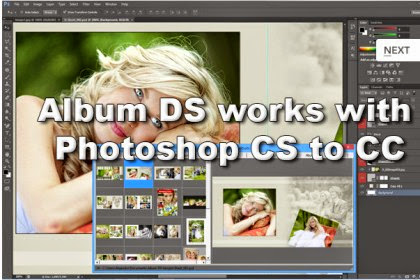 Album Ds 9 1 0 2 Free Full With Crack With Data Swaroop Creation Premium Software And Tools