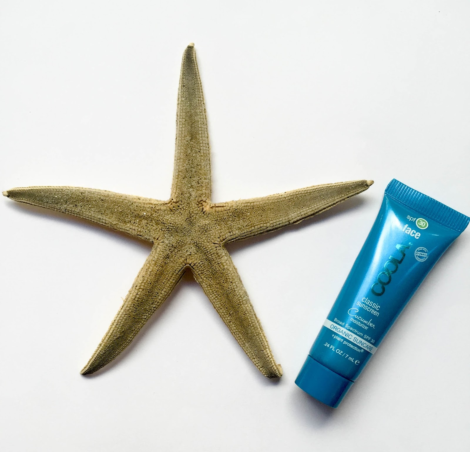 daily brunch summer beauty products