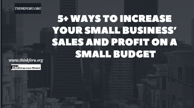 5+ Ways to Increase Your Small Business' Sales and Profit on a Small  Budget