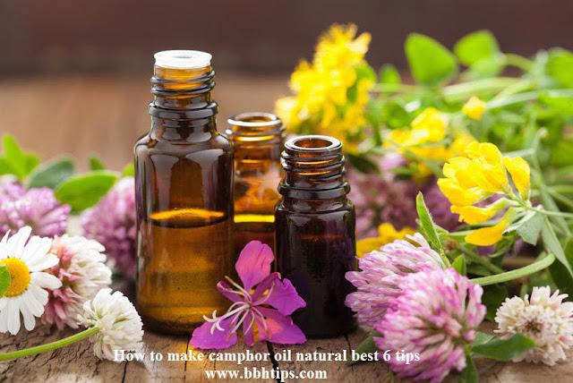 How make camphor oil natural best 6 tips