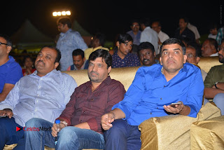 Nenu Local Audio Launch Stills  0221.JPG