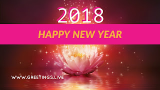 Fantasy Flower Sparkling bubble as fog fall Good Happy New Year 2018 wishes in English .jpg