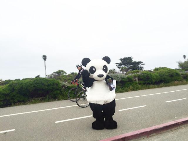 RnRSF Panda