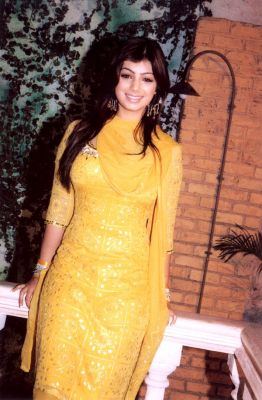 Cute Ayesha Takia Saree Photos Hot Pics Images All In