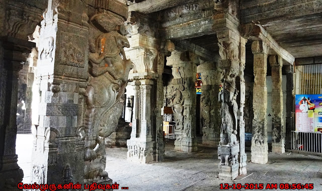 Sculptural marvel Pillars in Chettikulam Temple
