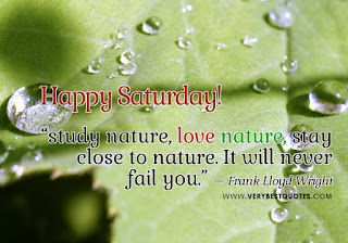 happy-saturday-afternoon-quotes